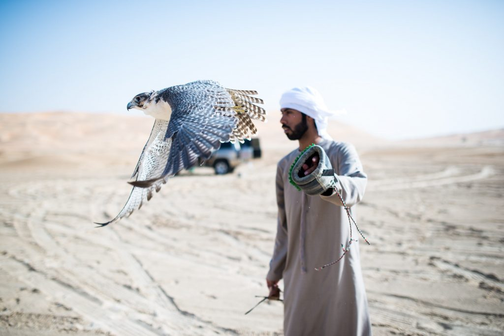 Empty Quarter Falconry
